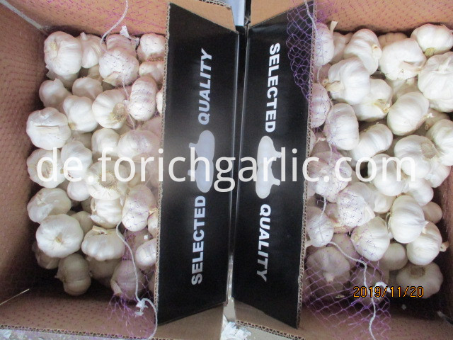 Best Quality 2019 Pure Garlic