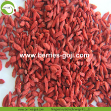 Factory Supply Fruits Pack USA Goji Berry