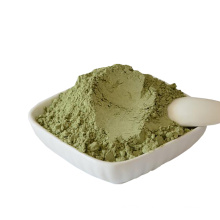 Factory direct fresh healthy organic celery juice powder with cheap price