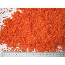 cenoura desidratada saudável e conveniente