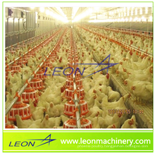 poultry automatic feeding system for chicken farm