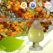 Health Care Products Sea Buckthorn Extract Sea Buckthorn Fruit Oil