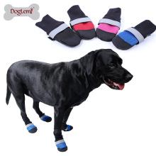 Cão Refletindo Tênis Para Animais De Estimação
