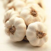 2016 Zuschneiden neuer weißen Knoblauch zum Verkauf