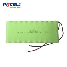 PKCELL Batería de NiMh recargable AAA600 7.2V