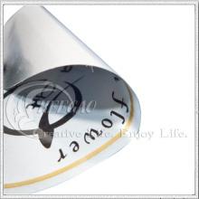 Металлизированная виниловая наклейка (кг-ST010)