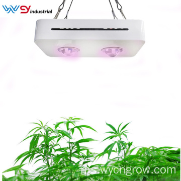 COB Grow Light Dijual 200W