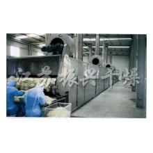 Série Dwt Desidratado Legumes Processing Belt Dryer