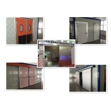 Porta de balanço / porta dobradiça / porta deslizante para sala fria