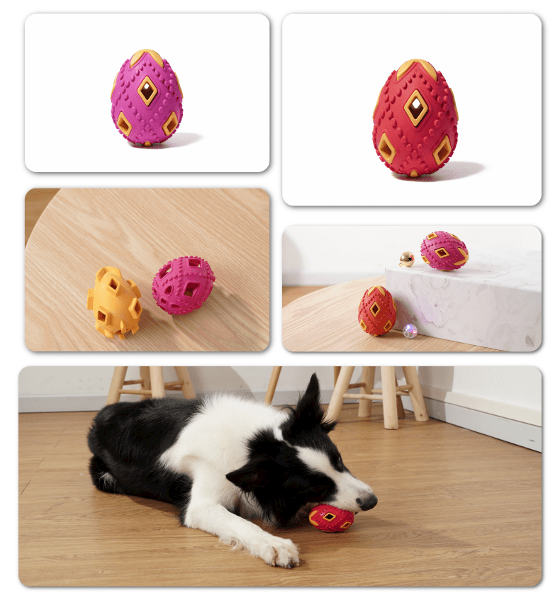 Hollow Egg Chew toy