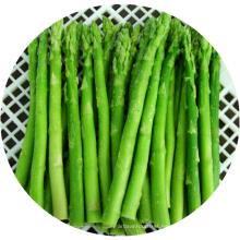 Green Frozen Asparagus frozen Vegetables