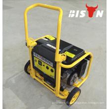 BISON (CHINA) 110V 220V tragbare Stromversorgung Kleiner elektrischer Generator Motor 3KW Benzingenerator