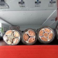 Câble d'alimentation isolé de 35 mm avec conducteur de cuivre à deux cœurs