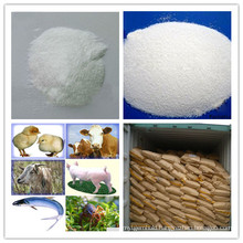 Hot Selling Betaine Anhydrous 98%