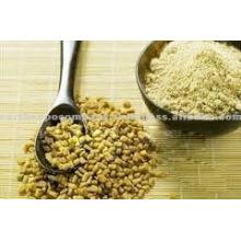 Canadian fenugreek seeds