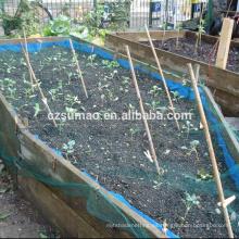 Buena calidad nueva terraza próxima orgánica jardinería sombra