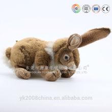Feliz Páscoa! Promoção da Páscoa cantando brinquedo de coelho coelho de pelúcia com cenoura