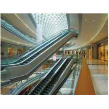Shopmall Project Escalator