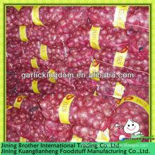 5-7 China neue Ernte rote Zwiebel