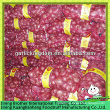 5-7 China nueva cosecha de cebolla roja