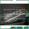 Китай Стиральная машина для пузырьков, стиральная машина для фруктов, стиральная машина для помидоров