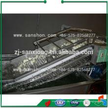China-Blasen-Waschmaschine, Frucht-Waschmaschine, Tomate-Waschmaschine