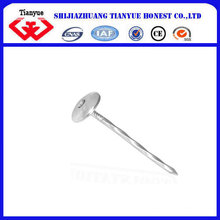 Good Quality of Roofing Nails/Umbrella Roofing Nails/ Corrugated Nails
