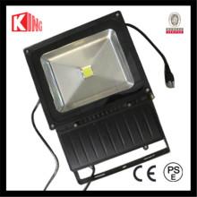 LED Bridgelux 100W CE al aire libre LVD EMC PSE COB LED luz del paisaje