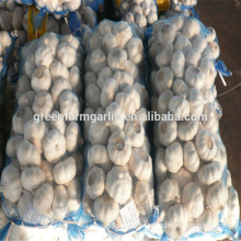 lowest price white garlic for sale