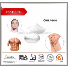 Ingredientes cosméticos Polvo de colágeno de pescado 100% puro