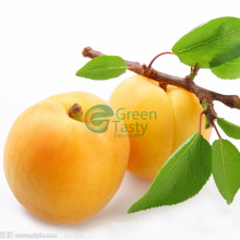 Best Fresh Canned Yellow Peach in Syrup