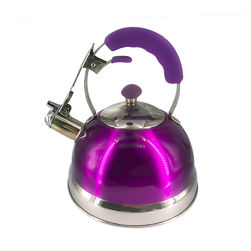 Stainless steel kettle with elegant coating