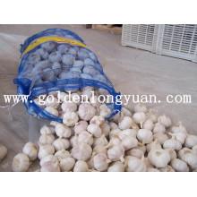 Alho fresco chinês com bom preço e qualidade