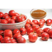Hawthorn Extract Flavonoids 5% 20% by UV