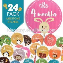 China supplier custom baby monthly milestone sticker 24 pack