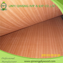 Supply AAA Grade 2.7mm Sapele Plywood with Competitive Price