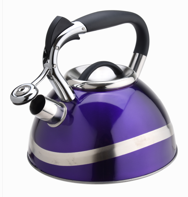 Durable Tea Kettle 412