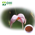 Extrato de Epimedium Grandiflorum Icariin Powder 20% HPLC