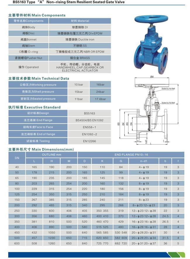 gate valve BS 5163