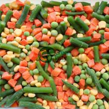 Vegetales mixtos congelados IQF de alta calidad Nueva cosecha