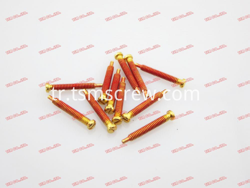 TSM GOLD RED SELF TAPPING SCREW