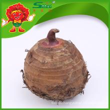 Organic Chinese TARO