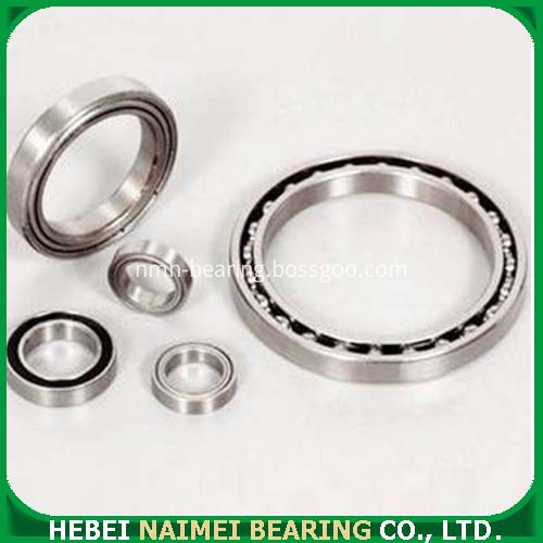 Bearing 6900