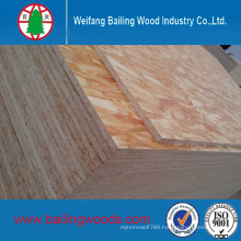OSB (Oriented strand board) for Furniture or Construction