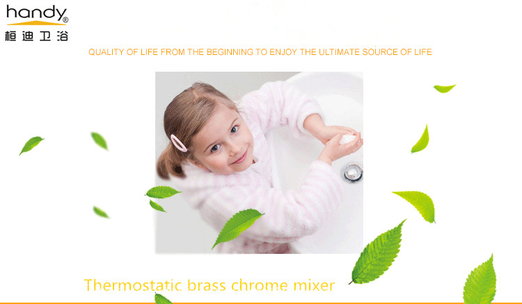 brass theromstatic shower mixer