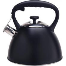 Tetera de acero inoxidable de color negro duradero