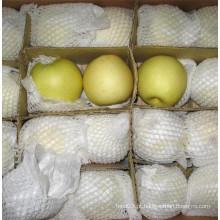 Pera dourada chinesa / coroa Pera Boa qualidade e preço