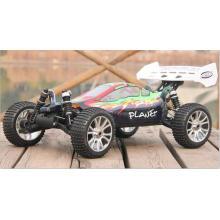 Radio Control Toy & Hobby 1 / 8º Sacle RC Car