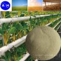 Chélate de composé d'acide aminé de calcium pour l'engrais nutritif des plantes