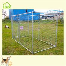 Canis de cão grandes amigáveis ao ar livre do metal